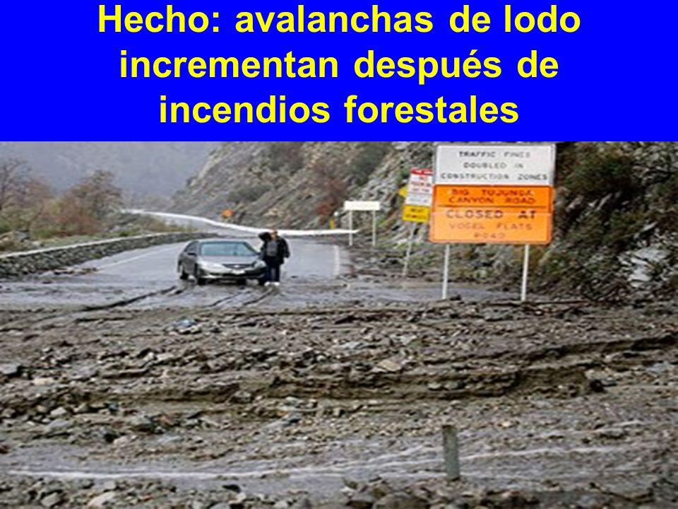 Hecho: avalanchas de lodo incrementan después de incendios forestales
