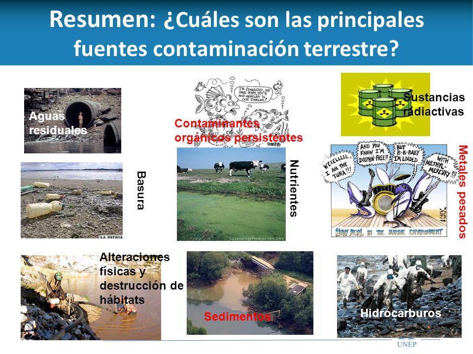 Resumen: ¿Cuáles son las principales fuentes contaminación terrestre
