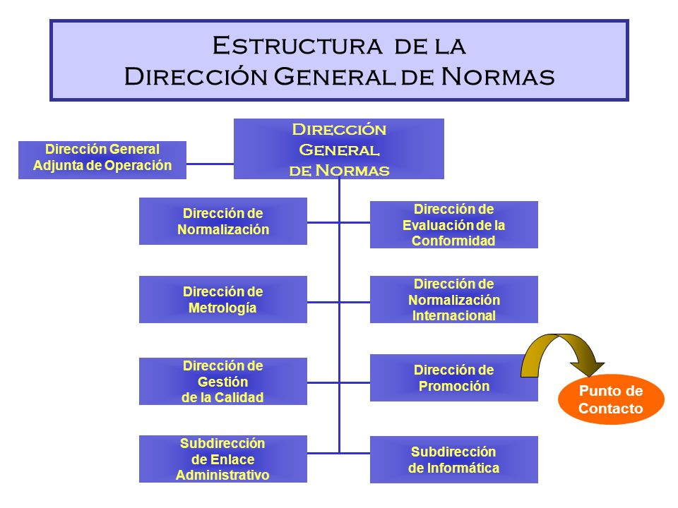 Estructura de la Dirección General de Normas