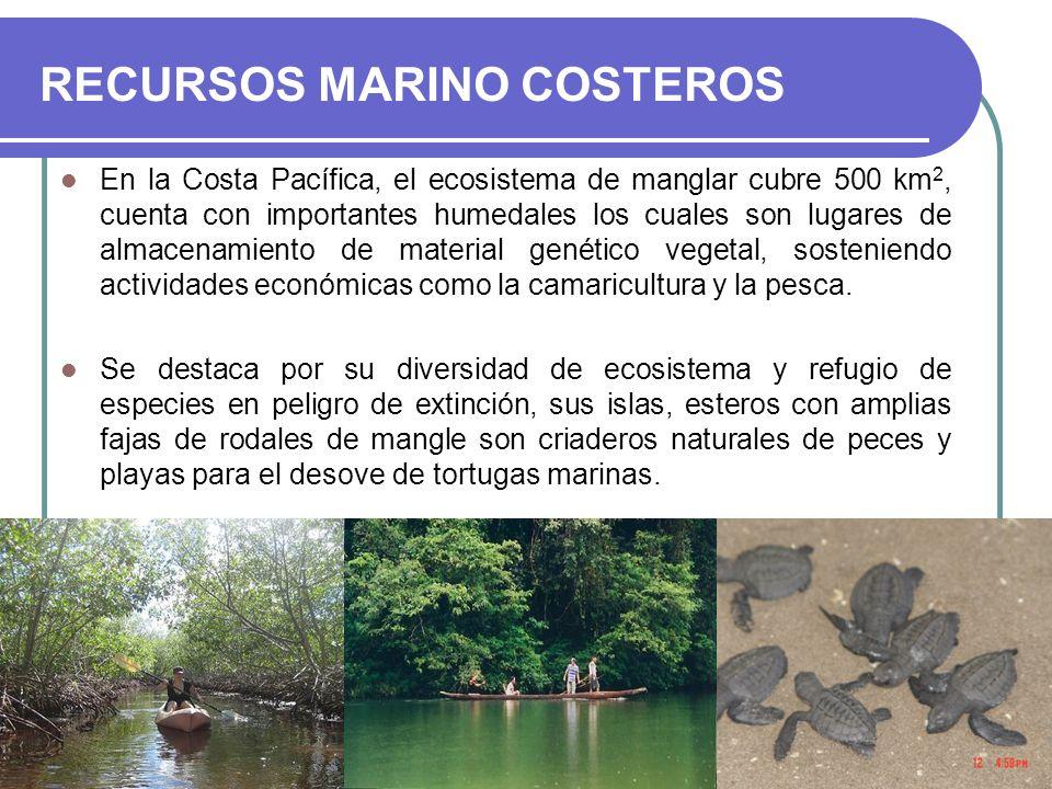 RECURSOS MARINO COSTEROS