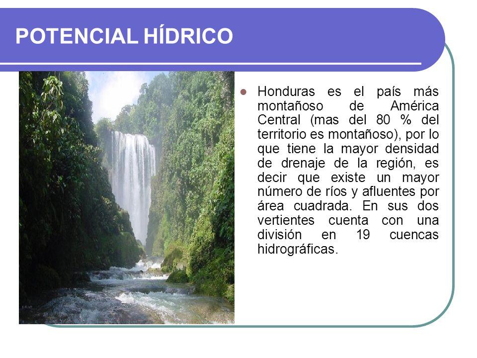 POTENCIAL HÍDRICO