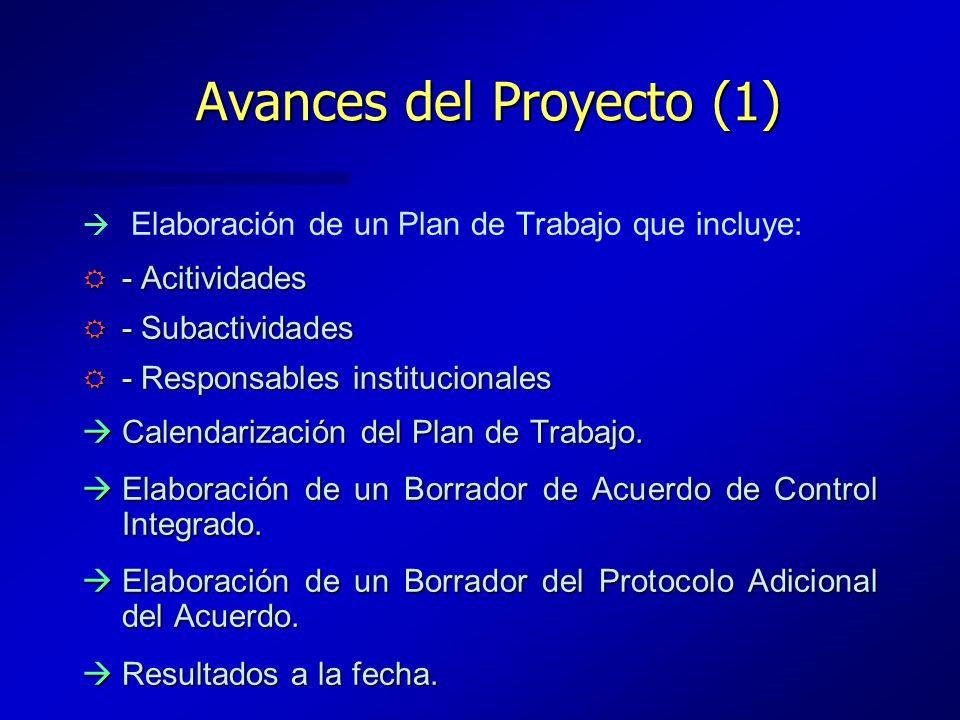 Avances del Proyecto (1)
