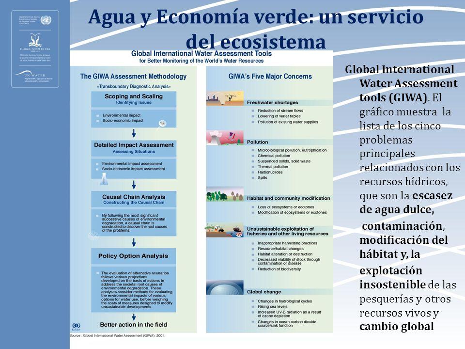 Agua y Economía verde: un servicio del ecosistema