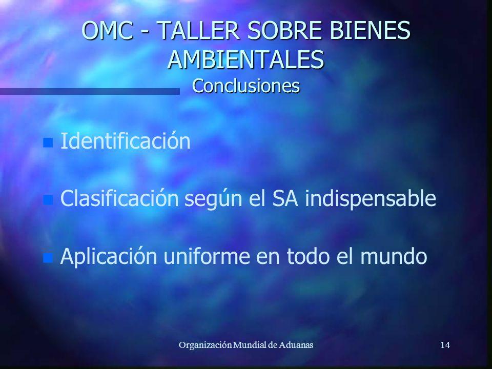 OMC - TALLER SOBRE BIENES AMBIENTALES Conclusiones
