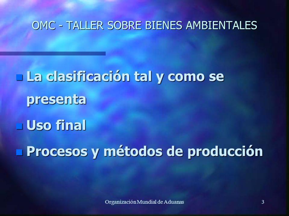 OMC - TALLER SOBRE BIENES AMBIENTALES