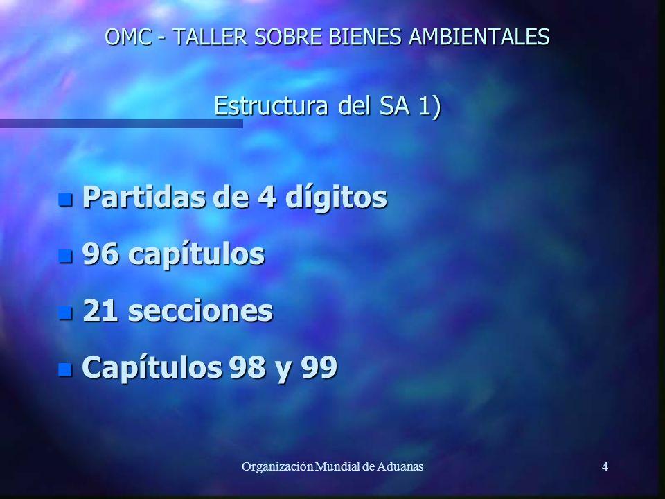 OMC - TALLER SOBRE BIENES AMBIENTALES Estructura del SA 1)