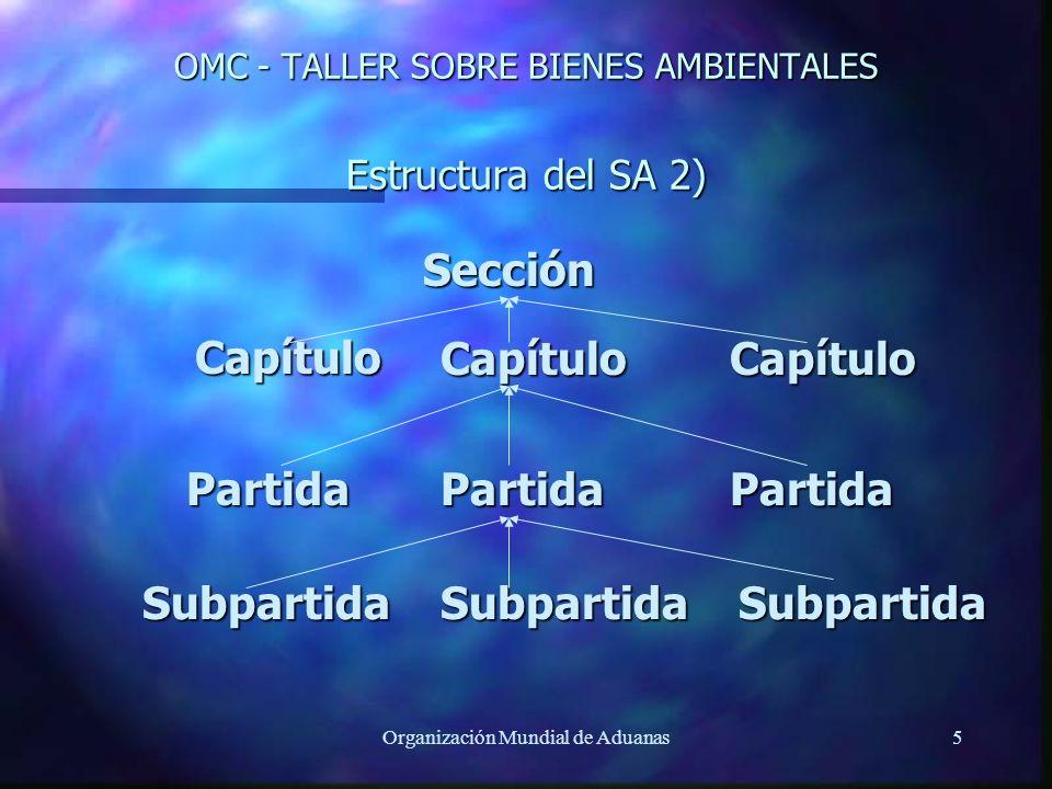 OMC - TALLER SOBRE BIENES AMBIENTALES Estructura del SA 2)