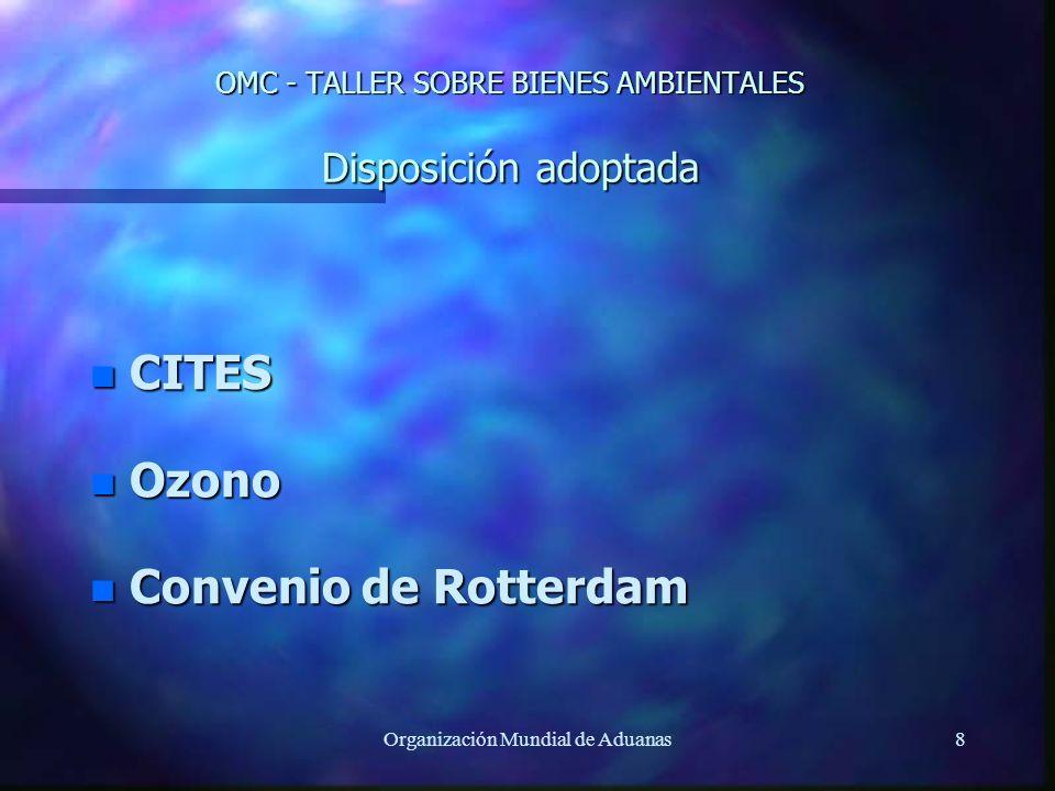 OMC - TALLER SOBRE BIENES AMBIENTALES Disposición adoptada