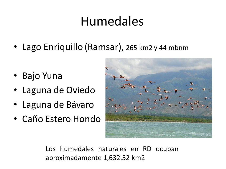 Humedales Lago Enriquillo (Ramsar), 265 km2 y 44 mbnm Bajo Yuna