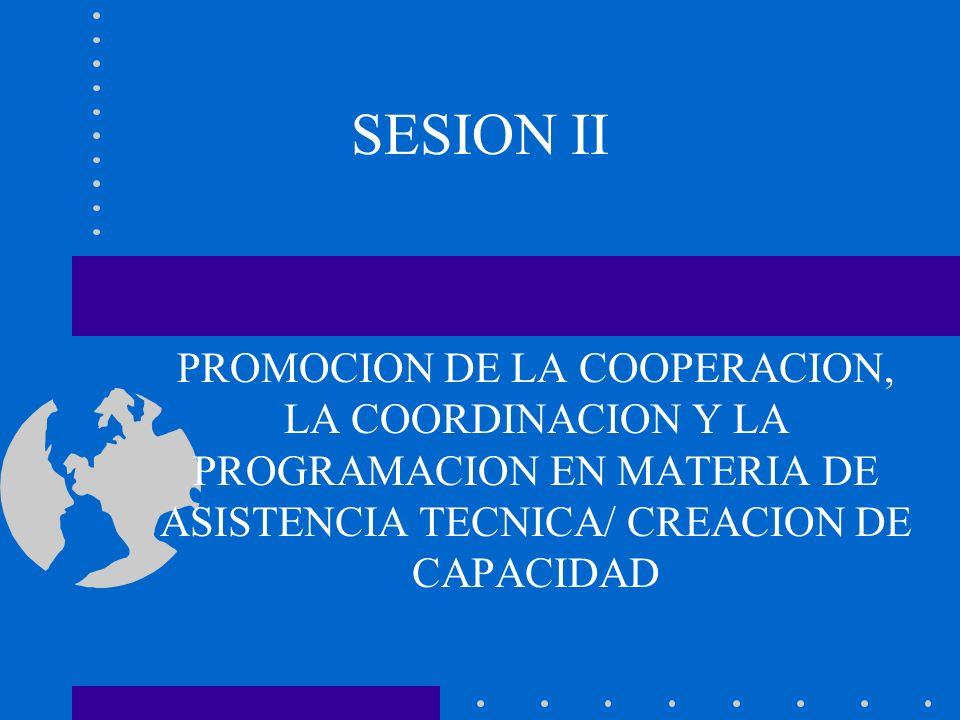SESION II PROMOCION DE LA COOPERACION, LA COORDINACION Y LA PROGRAMACION EN MATERIA DE ASISTENCIA TECNICA/ CREACION DE CAPACIDAD.