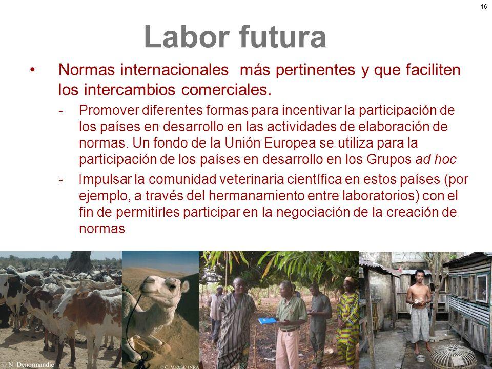 Labor futura Normas internacionales más pertinentes y que faciliten los intercambios comerciales.