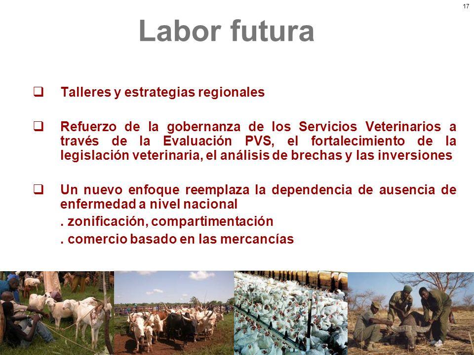 Labor futura Talleres y estrategias regionales