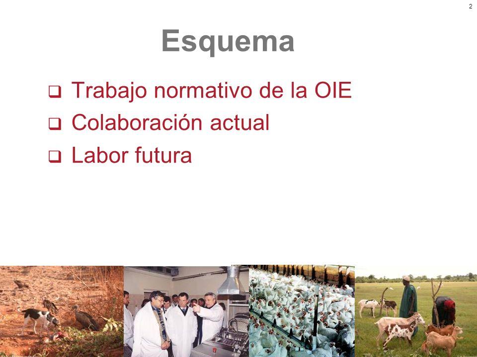 Esquema Trabajo normativo de la OIE Colaboración actual Labor futura