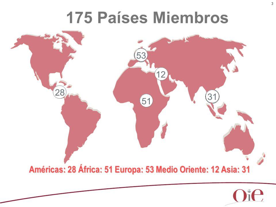 Américas: 28 África: 51 Europa: 53 Medio Oriente: 12 Asia: 31