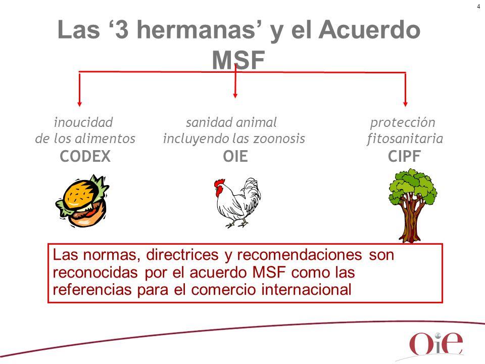 Las '3 hermanas' y el Acuerdo MSF