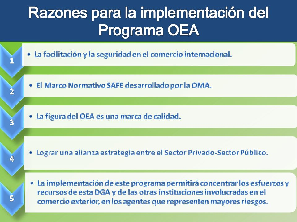 Razones para la implementación del Programa OEA