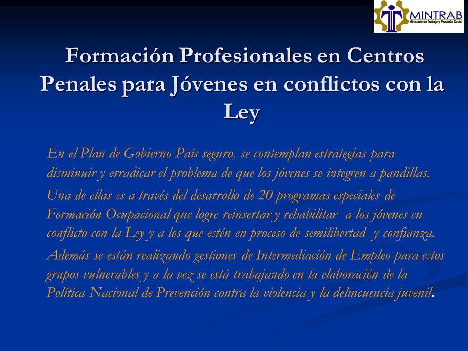 Formación Profesionales en Centros Penales para Jóvenes en conflictos con la Ley