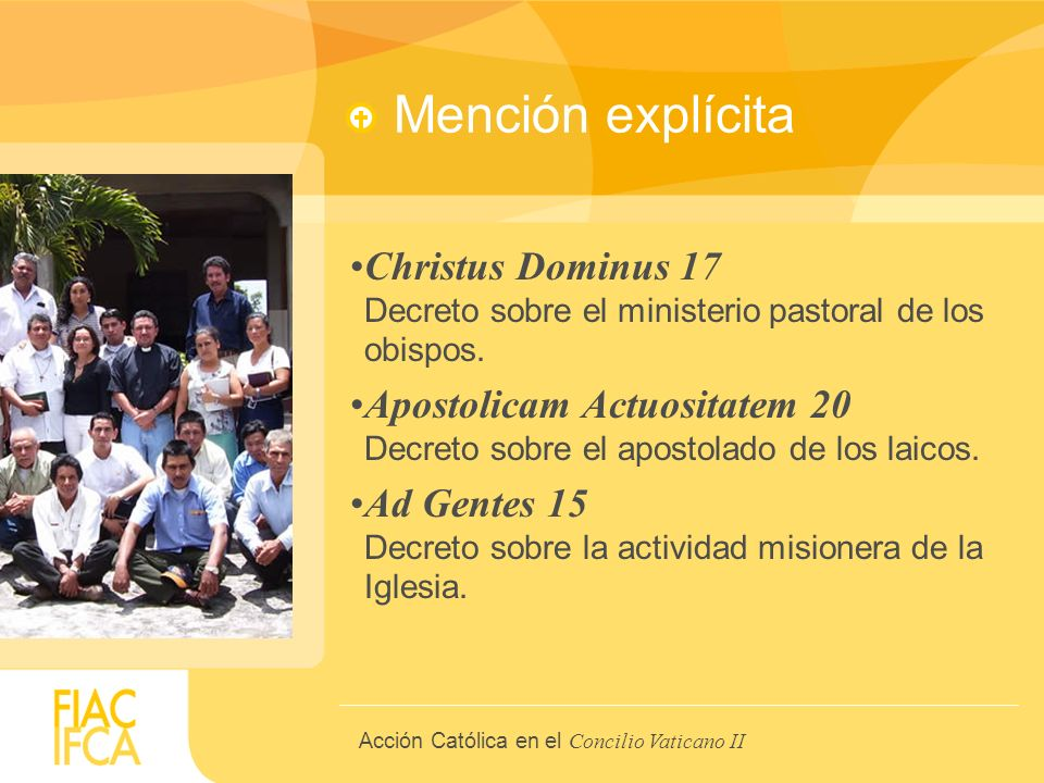 V. The Faithful (Apostolicam Actuositatem)