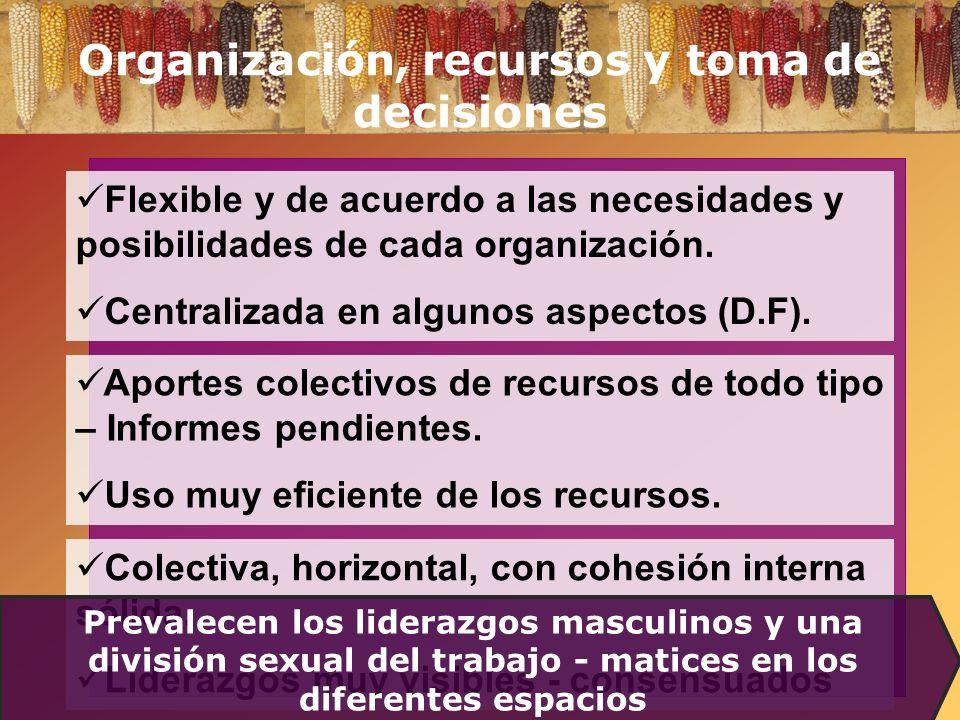 Organización, recursos y toma de decisiones
