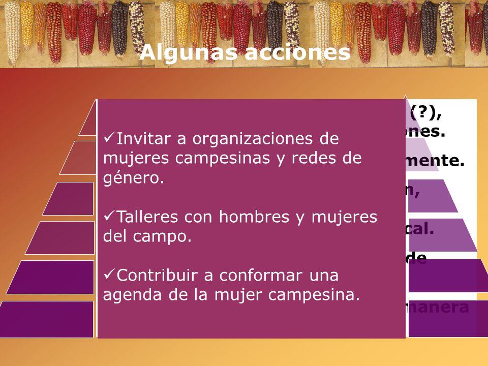Algunas acciones Invitar a organizaciones de mujeres campesinas y redes de género. Talleres con hombres y mujeres del campo.
