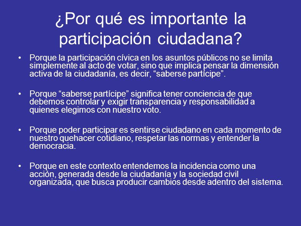 ¿Por qué es importante la participación ciudadana