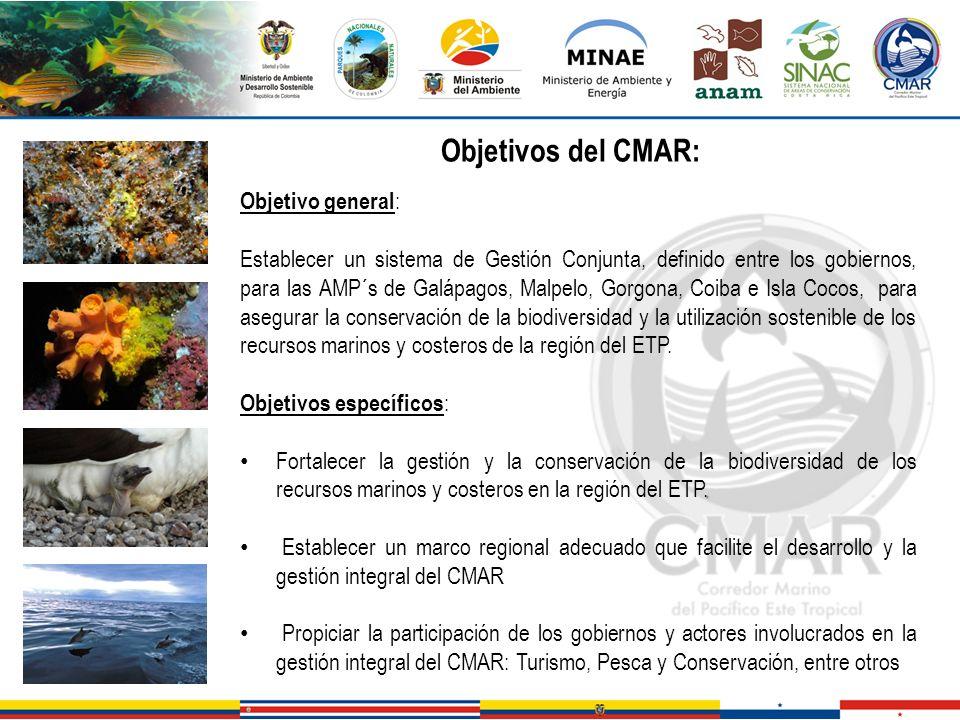 Objetivos del CMAR: Objetivo general: