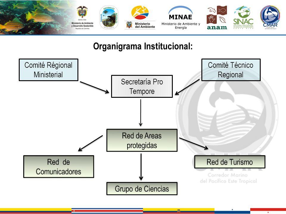 Organigrama Institucional: