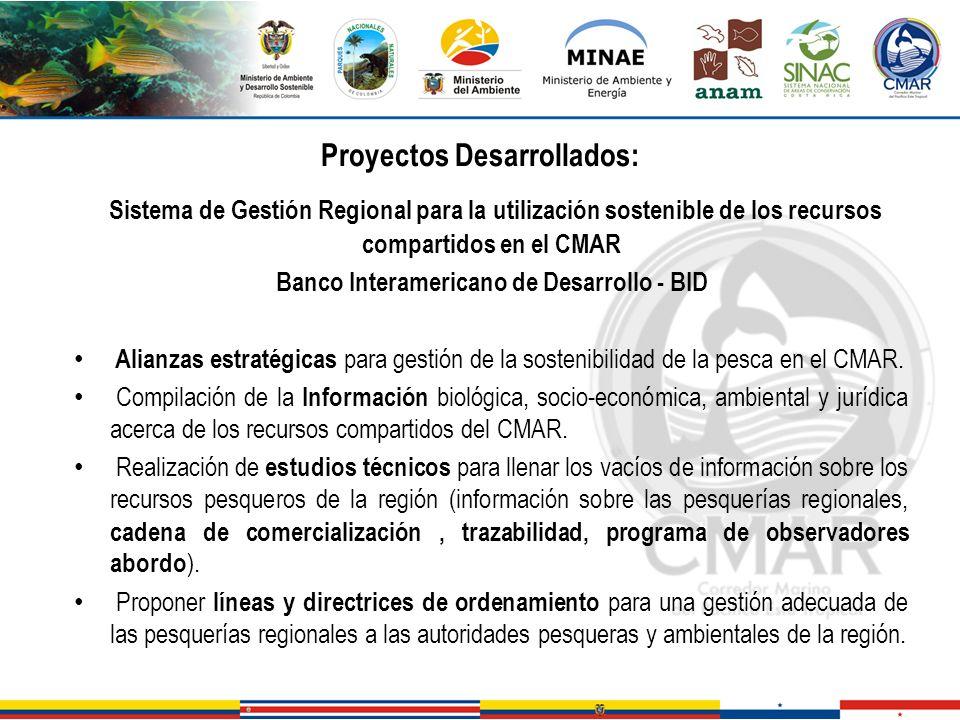 Proyectos Desarrollados: Banco Interamericano de Desarrollo - BID