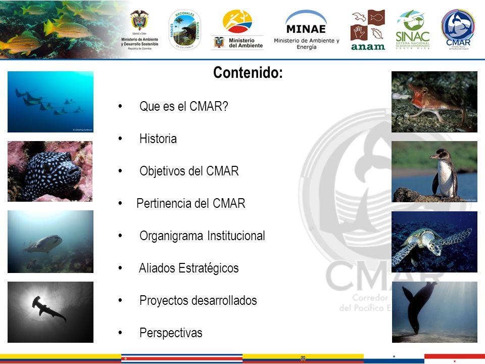 Contenido: Que es el CMAR Historia Objetivos del CMAR