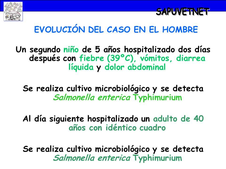 EVOLUCIÓN DEL CASO EN EL HOMBRE