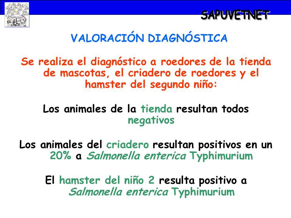 SAPUVETNET VALORACIÓN DIAGNÓSTICA