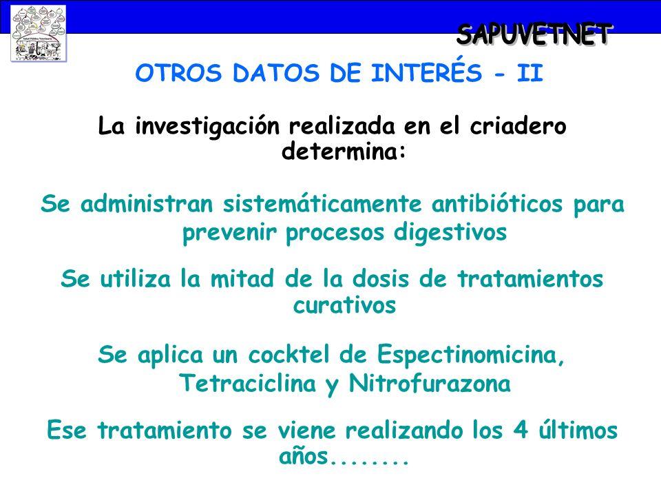 SAPUVETNET OTROS DATOS DE INTERÉS - II