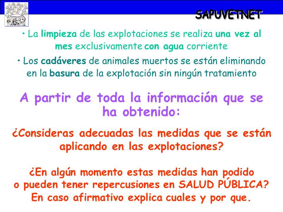 SAPUVETNET A partir de toda la información que se ha obtenido: