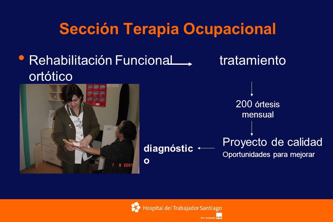 Sección Terapia Ocupacional