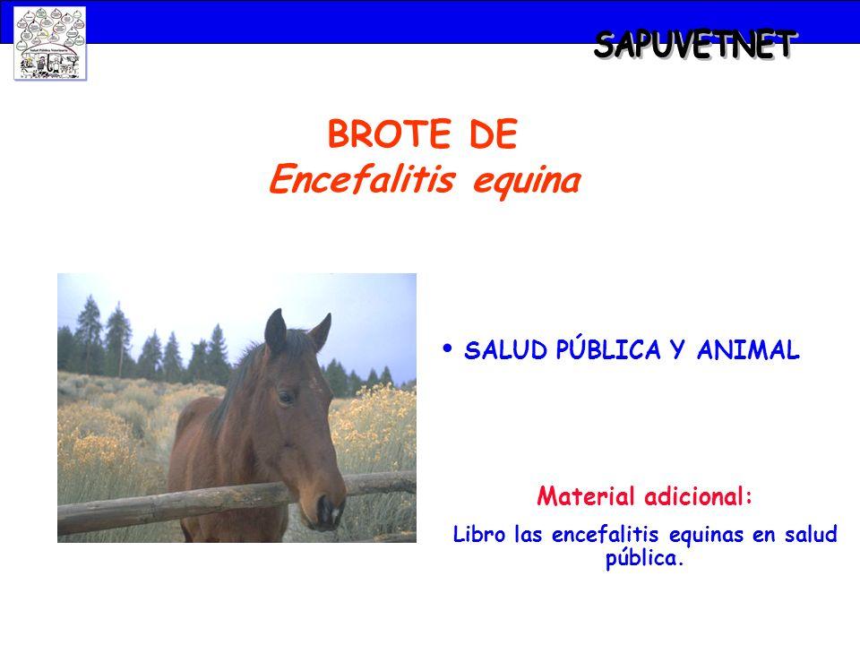 SAPUVETNET BROTE DE Encefalitis equina SALUD PÚBLICA Y ANIMAL