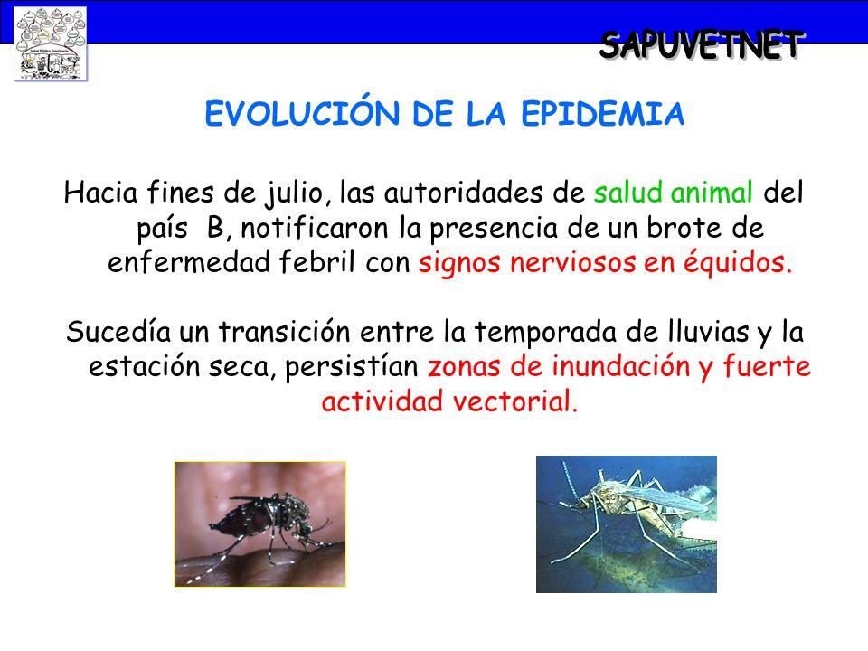 EVOLUCIÓN DE LA EPIDEMIA