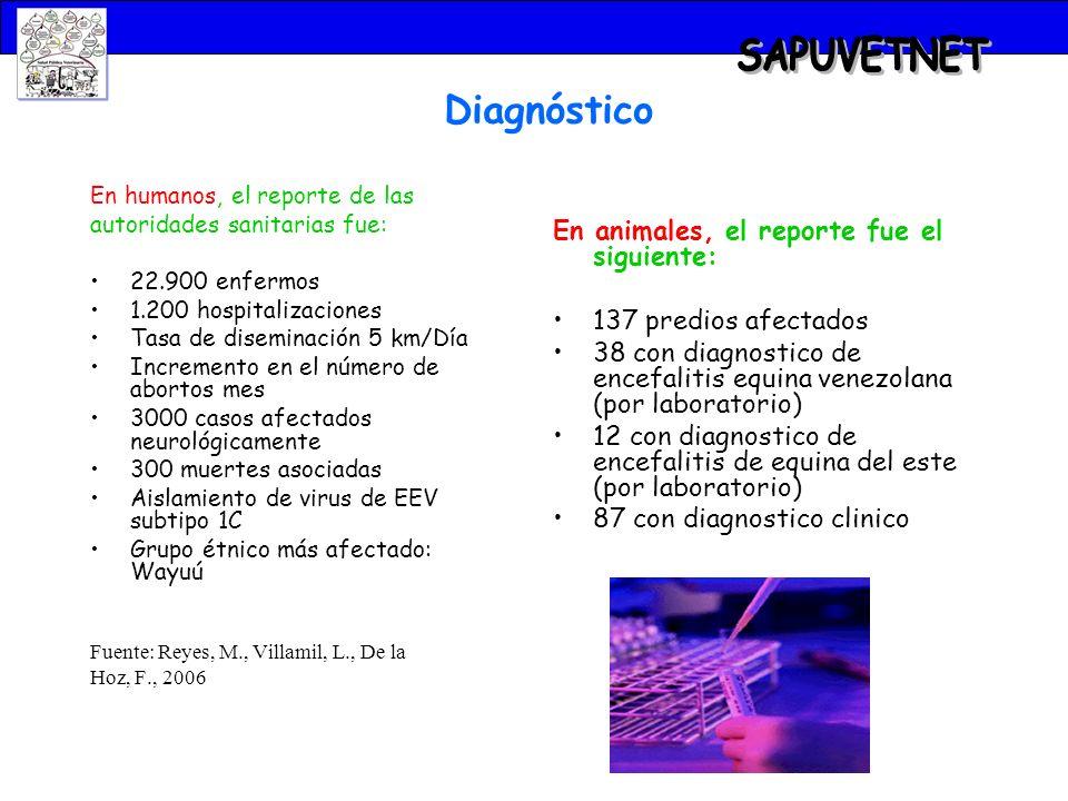 SAPUVETNET Diagnóstico En animales, el reporte fue el siguiente: