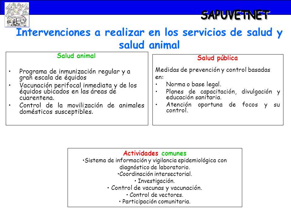 Intervenciones a realizar en los servicios de salud y salud animal