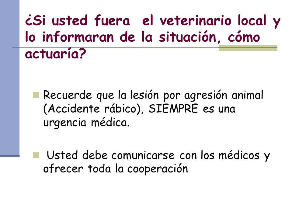 ¿Si usted fuera el veterinario local y lo informaran de la situación, cómo actuaría