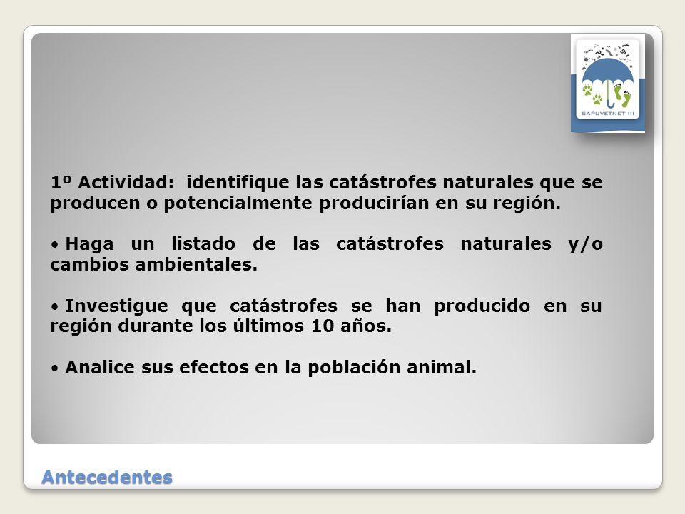 1º Actividad: identifique las catástrofes naturales que se producen o potencialmente producirían en su región.