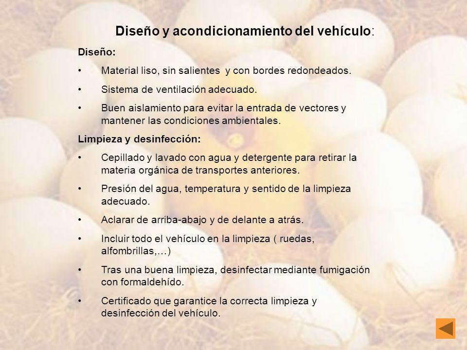 Diseño y acondicionamiento del vehículo: