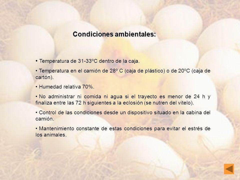 Condiciones ambientales: