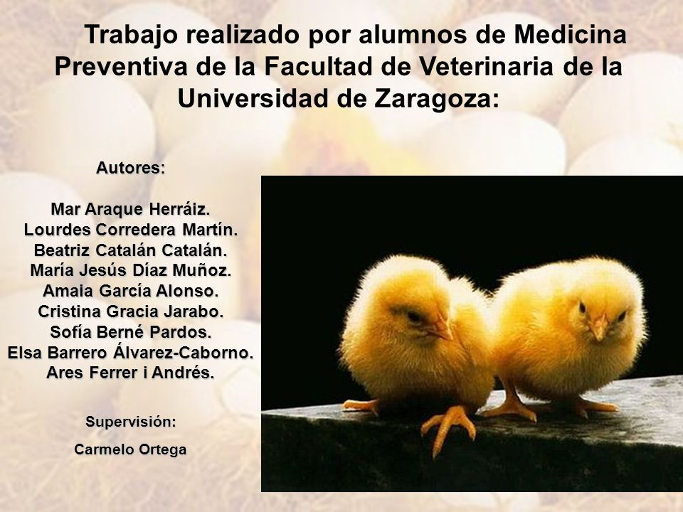 Trabajo realizado por alumnos de Medicina Preventiva de la Facultad de Veterinaria de la Universidad de Zaragoza: