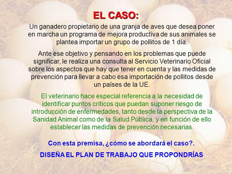 EL CASO: