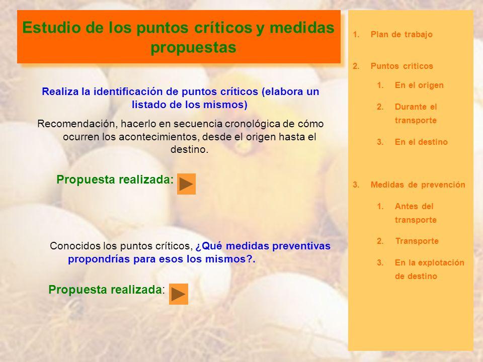 Estudio de los puntos críticos y medidas propuestas