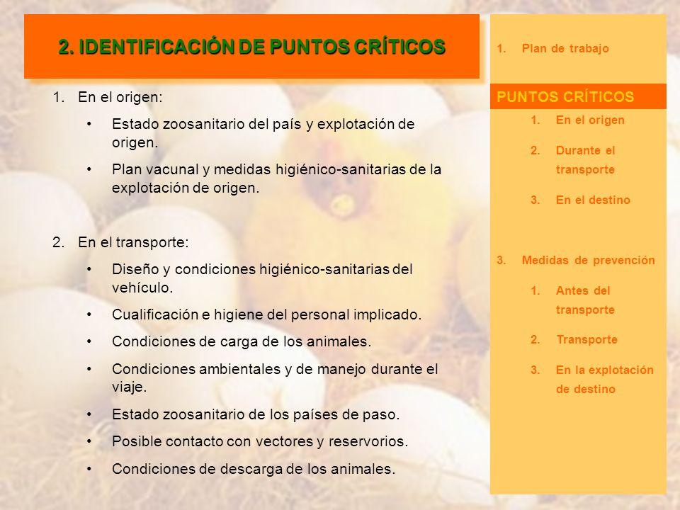 2. IDENTIFICACIÓN DE PUNTOS CRÍTICOS