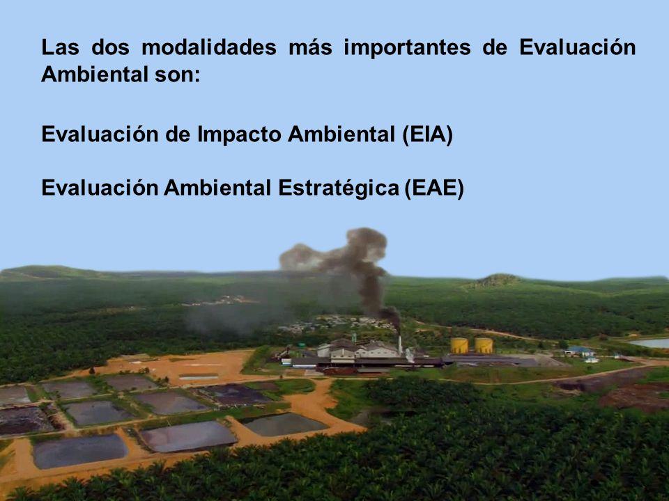 Las dos modalidades más importantes de Evaluación Ambiental son: