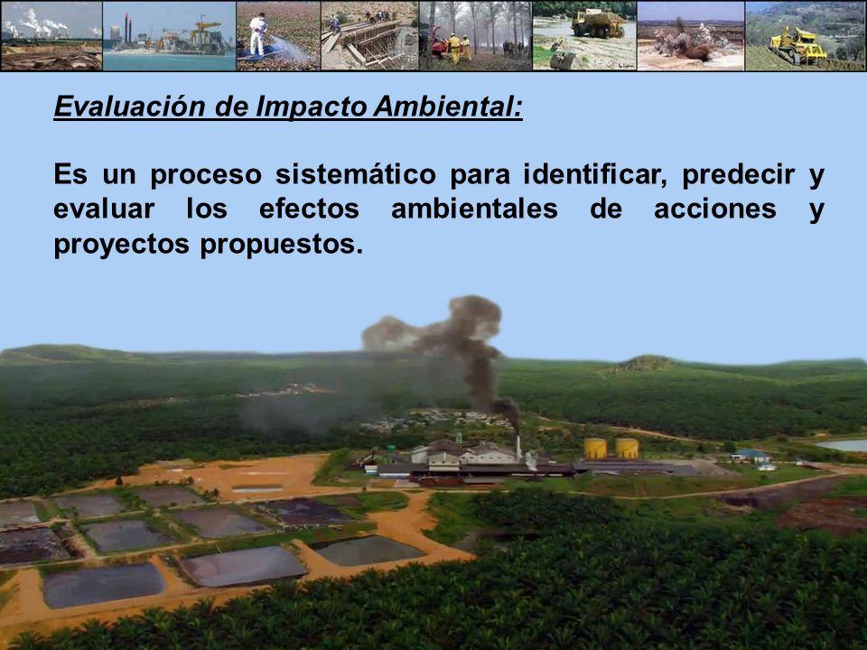 Evaluación de Impacto Ambiental: