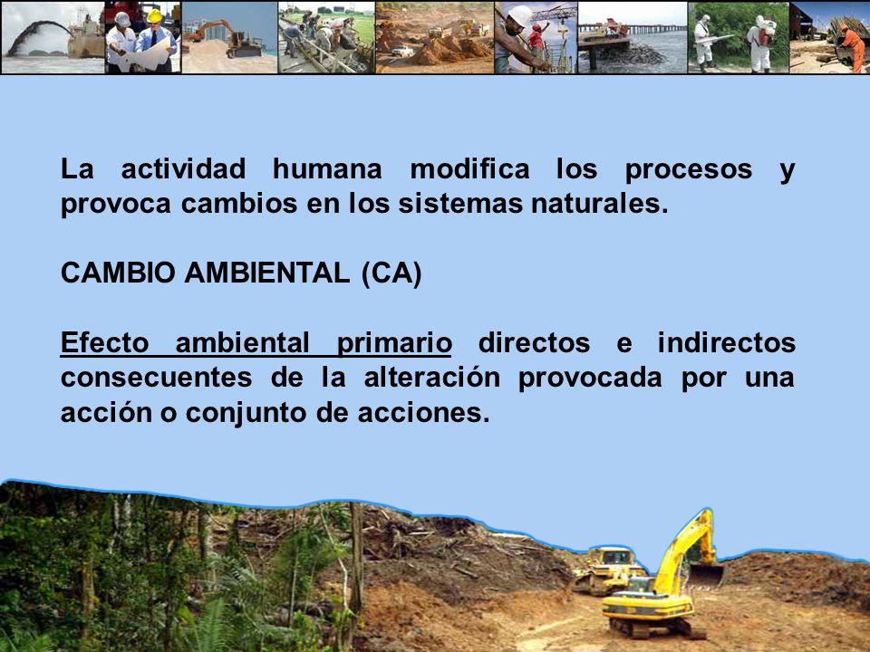 La actividad humana modifica los procesos y provoca cambios en los sistemas naturales.