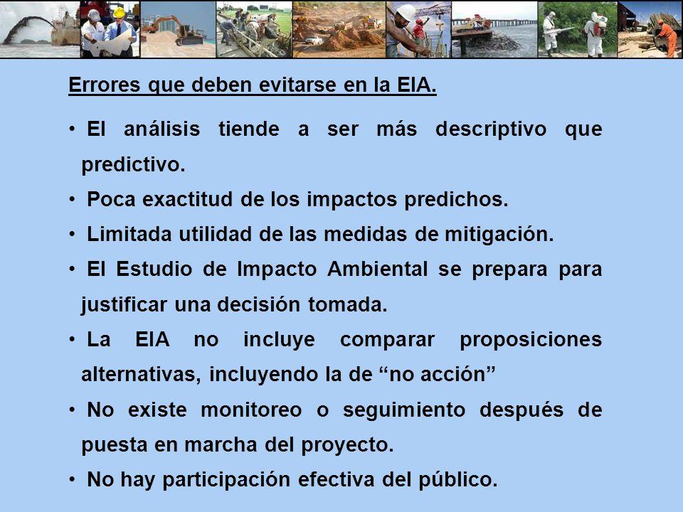 Errores que deben evitarse en la EIA.
